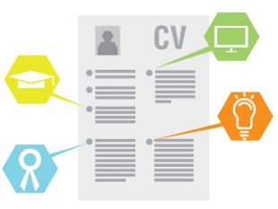 A CV with various elements highlighted by pointers.